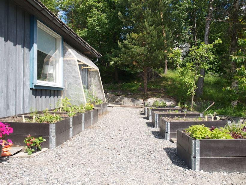 Kjøkkenhagen underveis. Pallekarmer på plass, med veggdrivhus og noen grønnsaker