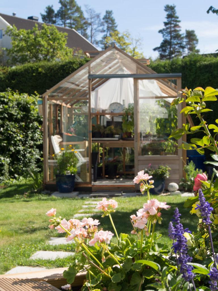 tredrivhus i hage